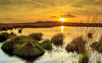Moor Sonnenuntergang