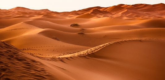 Wüste /Pixabay